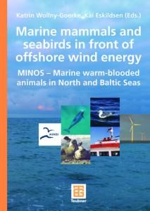 Offshore Wind Problematik